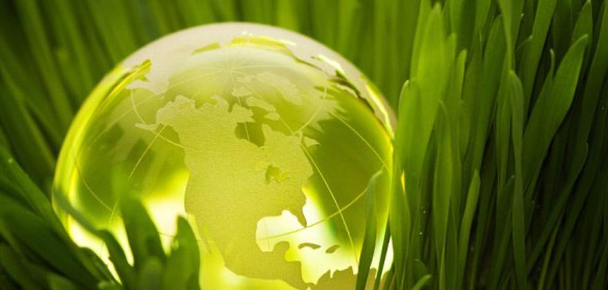 Environmental Sustainability Image
